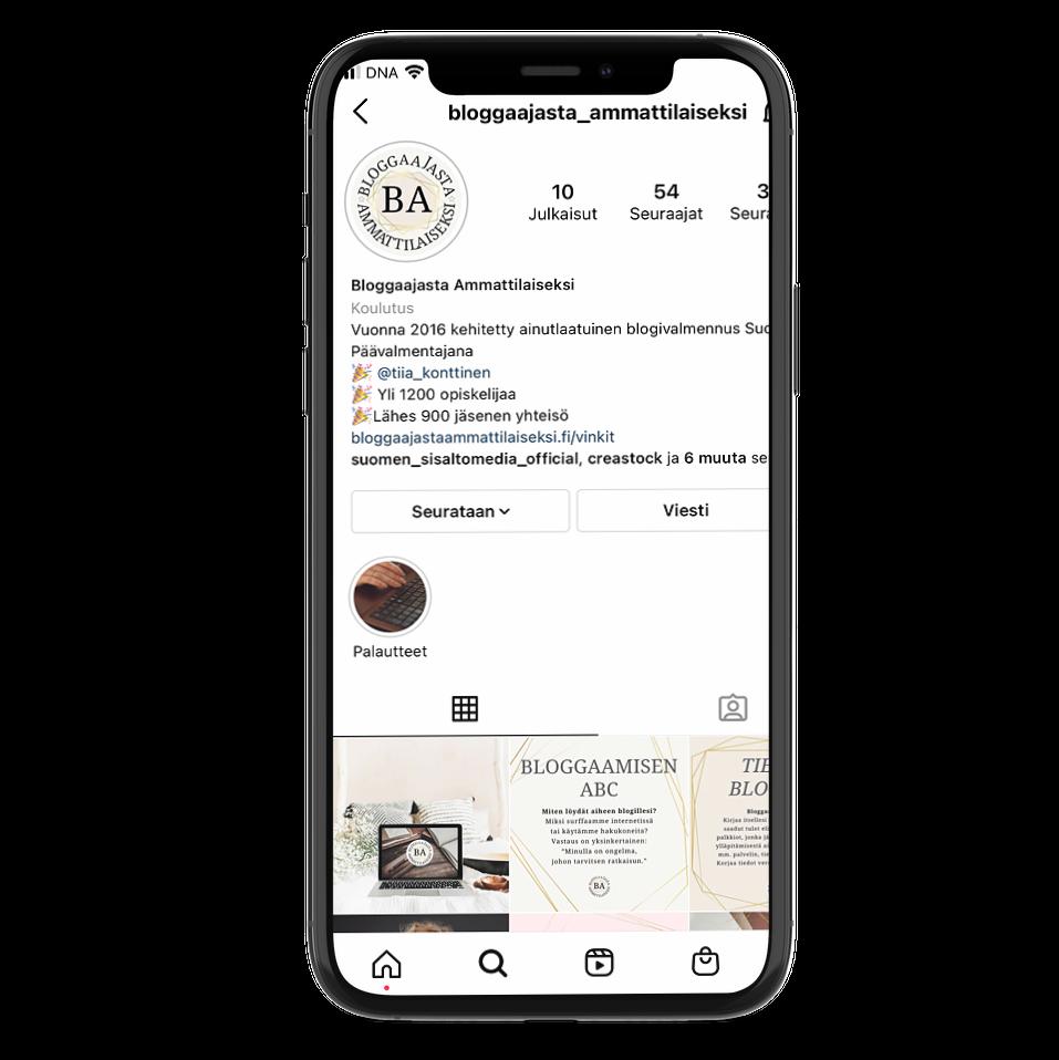 instagram-bloggaajasta-ammattilaiseksi
